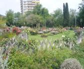 Cervantes Rose Garden and Park