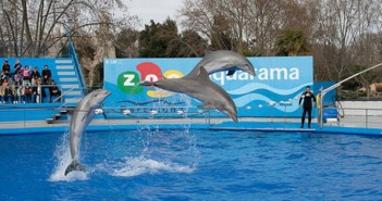 Zoo in Barcelona
