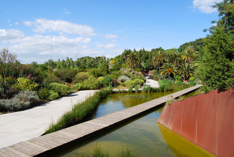 Botanic garden barcelona connect for Barcelona jardin botanico