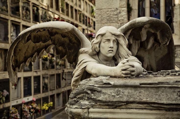 """Résultat de recherche d'images pour """"Montjuïc Cemetery"""""""