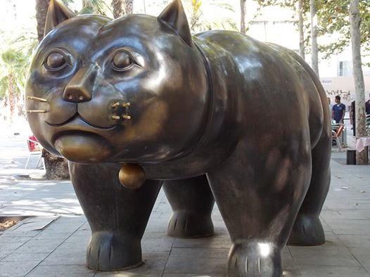 Raval Cat