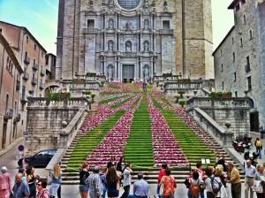 BCNConnect - Girona Flowers