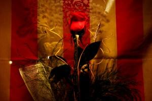 BCNConnect - Roses Sant Jordi