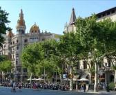 A Green Sunday in Barcelona