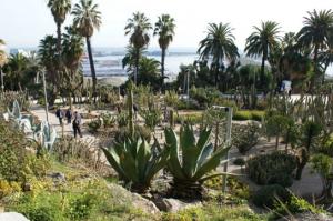 montjuic cactus garden