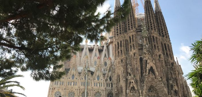 Barcelona Highlights Tour: voyage around the city's most beloved treasures