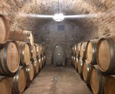 Discover the best wine tours in Barcelona – Barcelona tourist guide