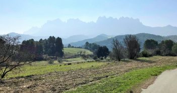 Explore Catalunya – Traditional Food & Wine Tour
