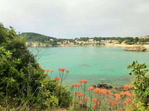 Bay with flowers