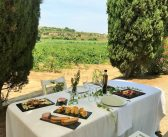 Sumarroca Winery – 4×4 Tour and Al Fresco Vineyard Lunch