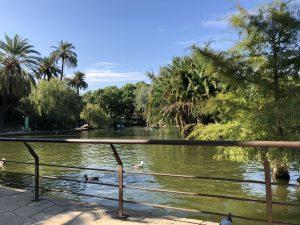 Lake at Parc de la Ciutadella