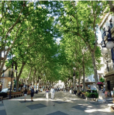 Discover the most famous streets in Barcelona